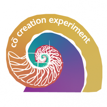 co-creation experiment